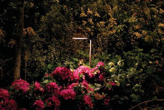 Outdoor Landscape Lighting Carlsbad : Exquisite outdoor lighting